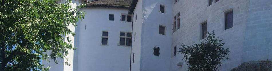 Rénovations au château - Printemps 2017